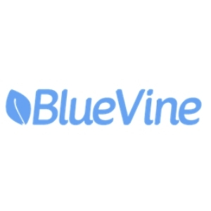 Bluevine Business Checking Account